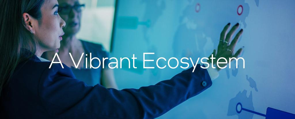 A Vibrant Ecosystem